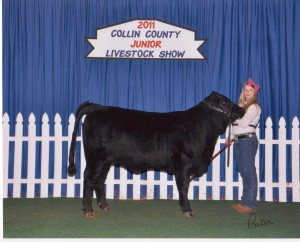 AW & 833W12 at 2011 Collin County Show